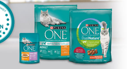 Purina ONE Cashback